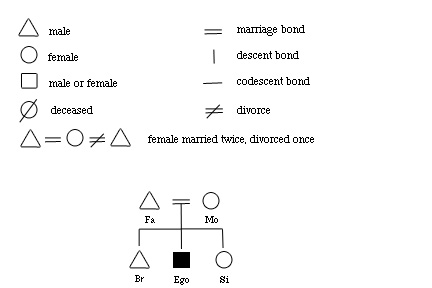 Kinship And Marriage Flashcards Quizlet